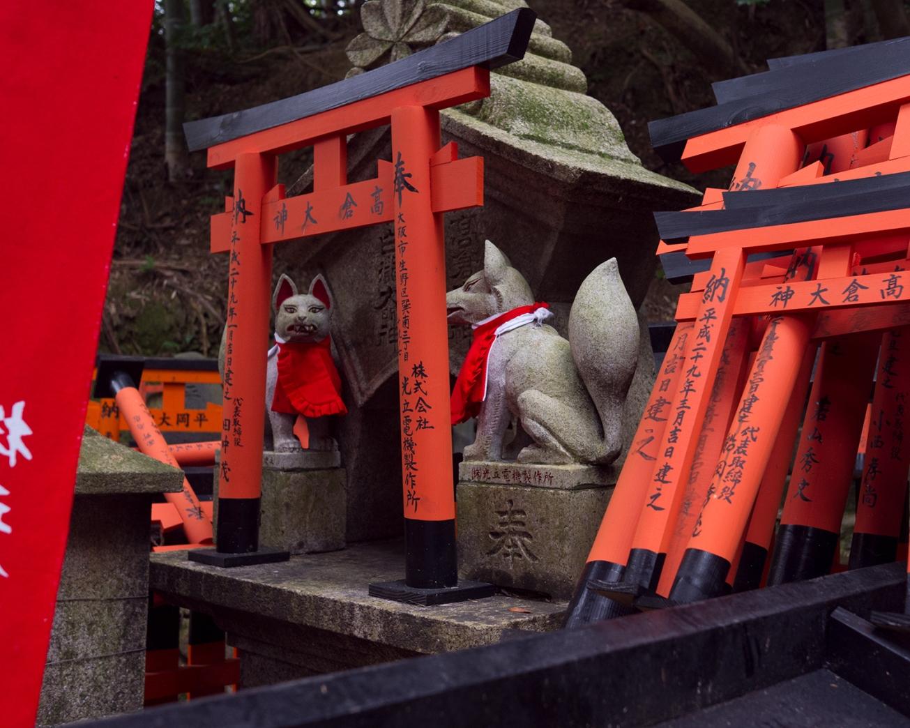 fushimi inari-8