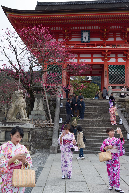 kiyomizu-dera temple-13