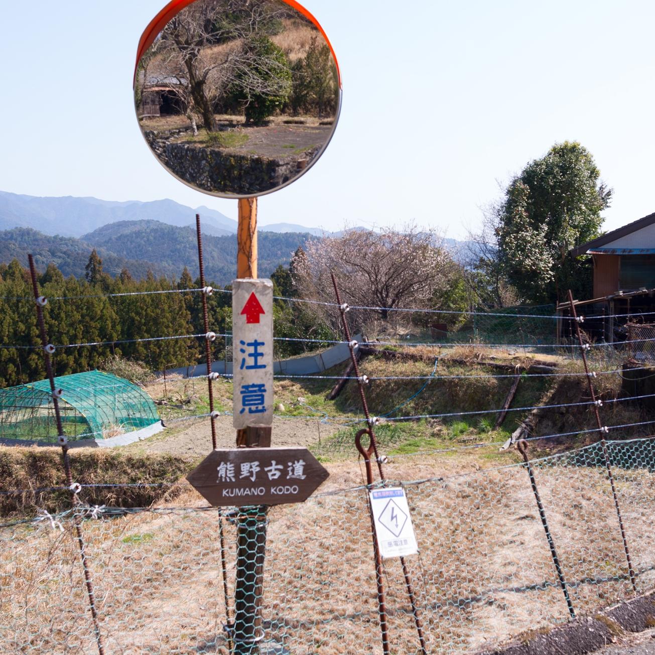 kunmano hongu-10