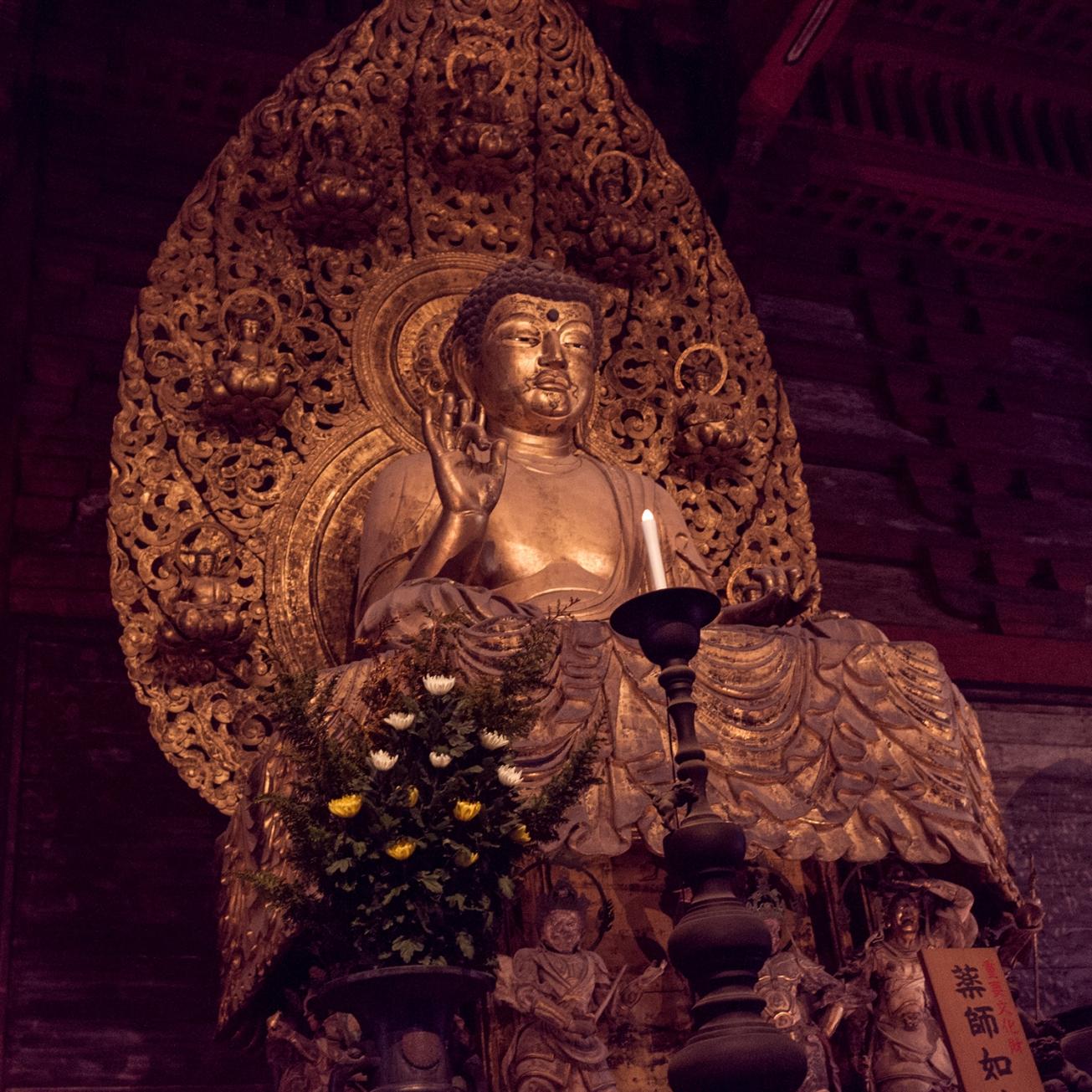 toji pagoda-9