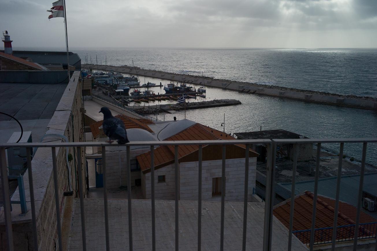 jaffa port (87 von 1)