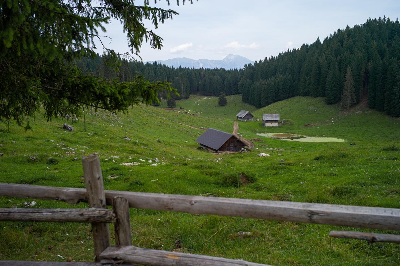 triglavski nardoni park (3 von 1)
